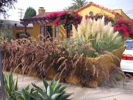 Carl Balton Garden
